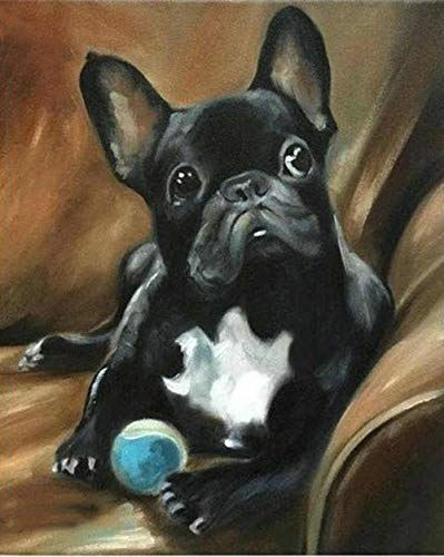 DIY Paint by Numbers for Adults Black French Bulldog Plays Ball Digital Oil Canvas Painting Kits for Adults Children Kids Birthday Wedding New Accommodation Decorations Gifts