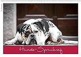 Hunde-Spruchreif (Wandkalender 2021 DIN A2 quer)