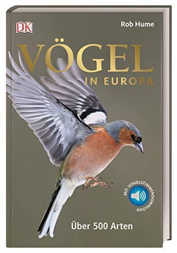 Vögel in Europa: Über 500 Arten