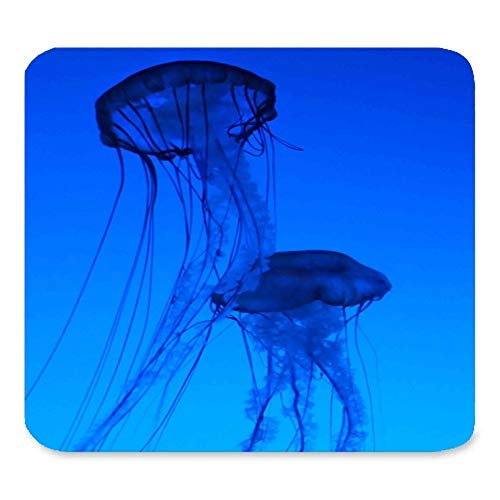 (Jellyfish Mosue pad) Custom Rectangle Mouse Pad Extended,Navy Blue Jellyfish,Gaming Non-Slip Rubber Large Mousepad Mat