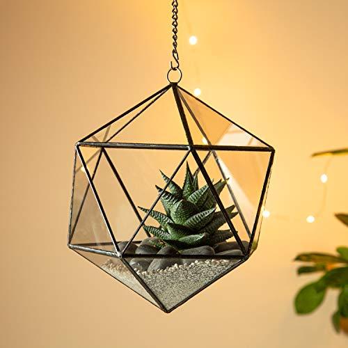 Ultra Cubeism Terrarium 19x19x21cm Premium kwaliteit glas Terrarium Terrarium Perfect voor mos en planten of decoraties