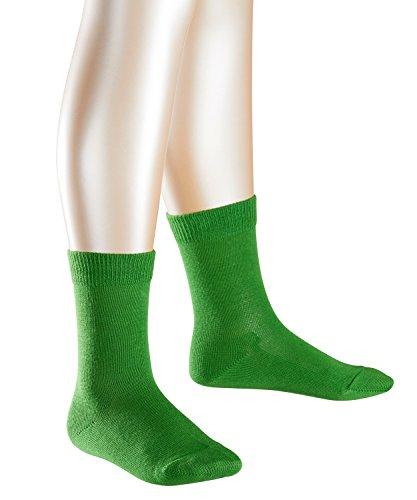 FALKE Family Kinder Socken rugby green (7741) 19-22 aus hautfreundlicher Baumwolle