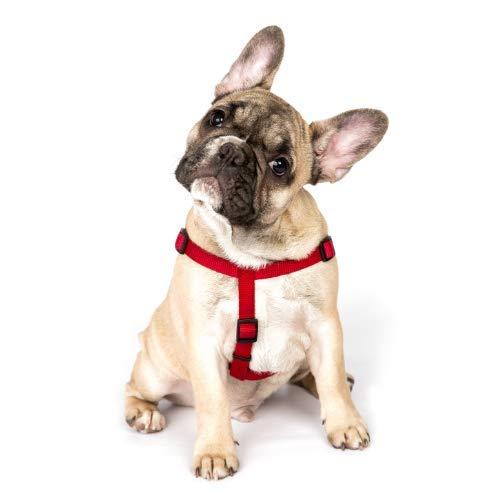 Resppet Pettorina per cani, a forma di H, colore rosso, taglia S