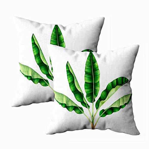 Juego de 2 fundas de almohada para exteriores, 45,7 x 45,7 cm, diseño de árbol de plátano tropical, acuarela, decoración del hogar, fundas de almohada con cremallera para sofá