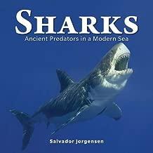 Sharks: Ancient Predators in a Modern Sea