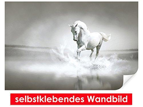XXL behang zelfklevende muurschildering White Horse 4 – gemakkelijk te plakken – muurprint, wallpaper, posters, vinylfolie met puntlijm voor muren, deuren, meubels en alle gladde oppervlakken van trendy muren 90x60cm