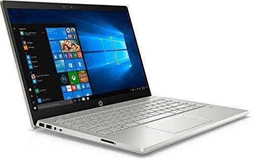 HP Pavilion 14-ce3040ng (14 Zoll / Full HD) Laptop (Intel Core i7-1065G7, 16GB DDR4 RAM, 1TB SSD, Nvidia GeForce MX250 4GB GDDR5, Windows 10) silber