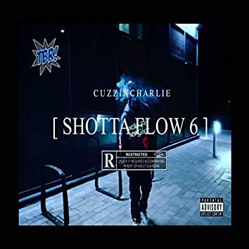 Shotta Flow 6