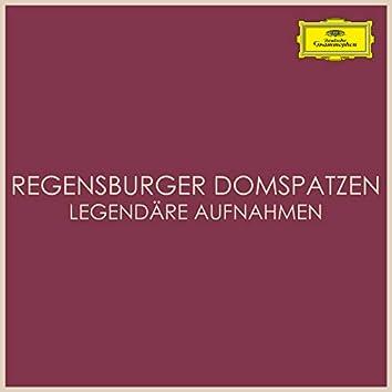Regensburger Domspatzen Legendäre Aufnahmen