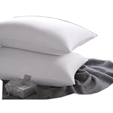 East coast bedding 100% White Down Pillow 100% Cotton Fabric 550 Fill Power - Set of 2 (King)