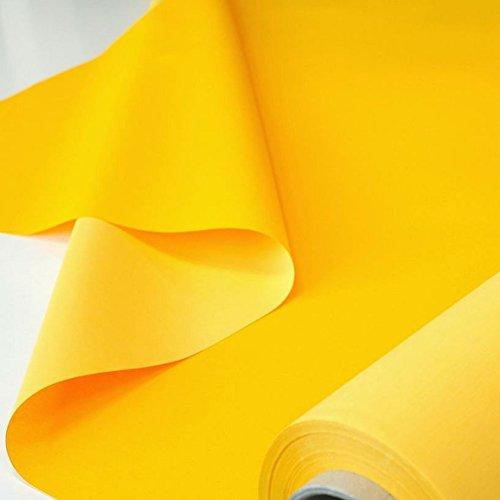 TOLKO 50cm Sonnenschutz Planen- und Sonnensegel-Stoff Meterware - Oeko-TEX® Qualität mit UV-Schutz - Wasserdicht, Wetterbeständig und Lichtecht - 170 cm...