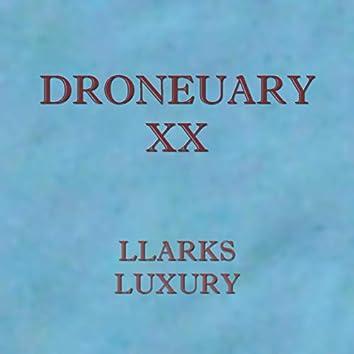 Droneuary XX
