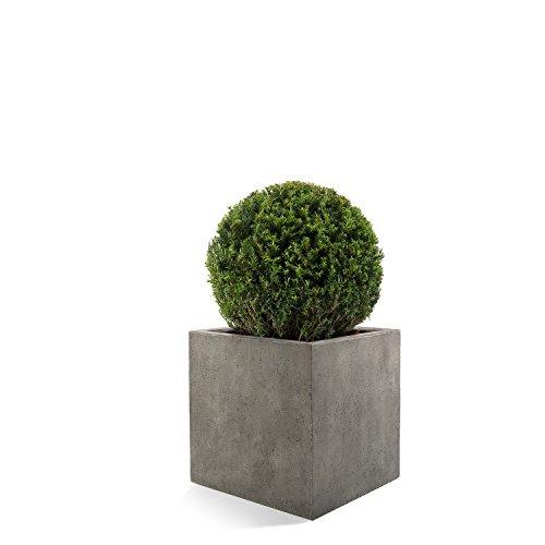 Luca Lifestyle Pflanzkübel Grigio Cube Grau Quadratisch Fiberglas *5 Jahre Garantie* - 50x50x50cm - F196