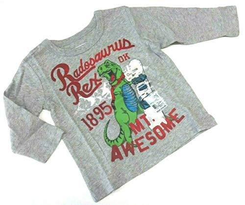 OshKosh B'Gosh 68 74 80 T-shirt à manches longues Motif dinosaure Gris Taille 9 12 18 mois - Gris - 80