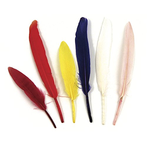 Rayher 8525349 Indianerfedern, 10,5 cm, Beutel 24 Stück, Farben gemischt, natürliche Federn, Schmuckfedern, Bastelfedern, Gänsefedern