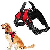 rcruning-eu regolabile cani animali pet rope cane dog harness,pettorina per cani traspirante confortevole durevole imbracatura per la corsa, passeggiate, jogging-red-l