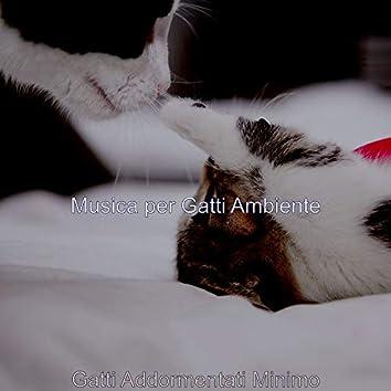 Gatti Addormentati Minimo