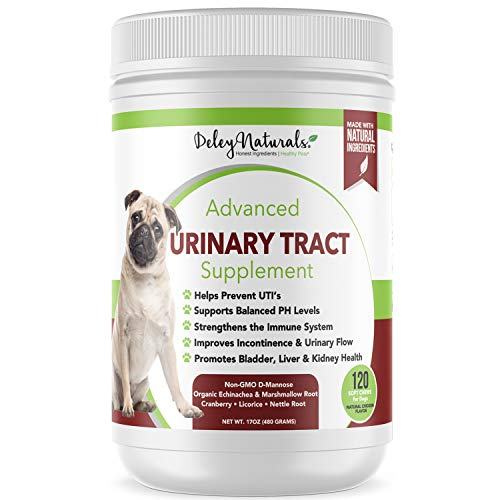 Dog UTI Prevention - Incontinence, Bladder, Kidney & Immune System Support - Cranberry Pills for Dogs - D-Mannose & Echinacea - Made in USA, Chicken, All Natural - 120 Grain Free Soft Chews
