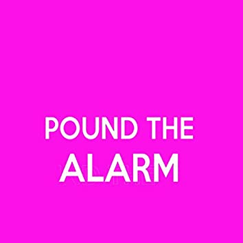 Pound the Alarm (Sexy and Hotter) - Single (Nicki Minaj Tribute)