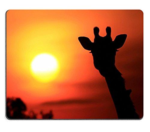 luxlady Naturkautschuk Mousepads Bild-ID 30692589Giraffe die Giraffe Giraffe (Sternbild) Silhouette Bei Sonnenuntergang auf der Maasai Mara National Reserve Safari in Kenia