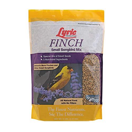 Lyric 2647469 Finch Small Songbird Wild Bird Mix, 5 lb