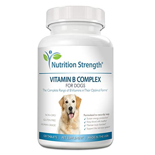 Top 10 best selling list for vitamin b complex supplement for dogs