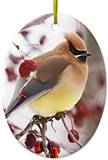 Christmas Decorations Tree Ornament Cedar Waxwing 2 Ornament Oval Ornament Funny Xmas Gifts Holiday Home Decor