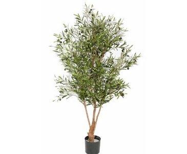 Olivenbaum Kunstbaum, mit ca. 4160 Textil Blättern, 120 Oliven und Naturstamm, Höhe 170cm – künstlicher Olivenbaum