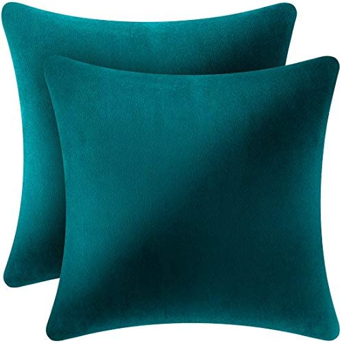 Syntus Set of 2 Velvet Throw Pillow Covers Soft Cozy Square Decorative Pillow Case Cushion for product image