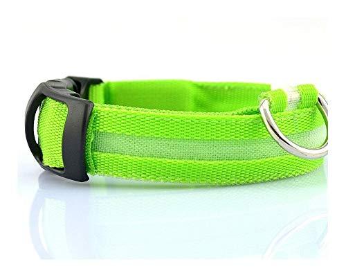 SFQRYP Collar de nailon con luces LED de 7 colores para perros, seguridad nocturna, antipérdida, intermitente, para perros pequeños, color (color: collar grann, tamaño: XS)