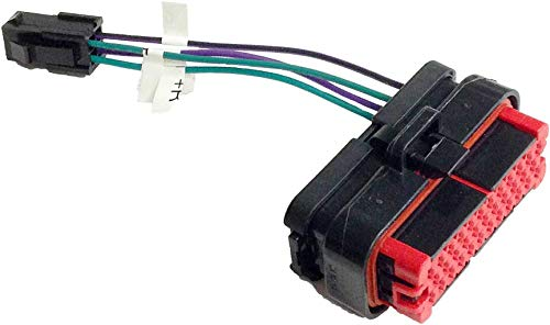Hogtunes Rear Speaker Plug Output for Advance Audio
