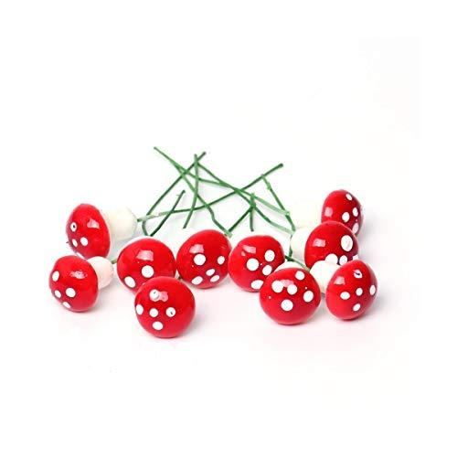 Danmu Art 5/pcs en Bois Mini Champignons Jardin F/é/érique Miniature Maison Micro Paysage Home D/écoration de Jardin Pots de Fleurs bonsa/ï Craft Decor