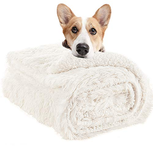 LOCHAS Luxury Velvet Fluffy Dog Blanket, Extra Soft and Warm Sherpa Fleece Pet Blankets for Dogs Cats, Plush Furry Faux Fur Puppy Throw Cover, 30''x40'' Cream White