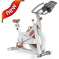 DXIUMZHP Bicicletas estáticas y de Spinning Bicicleta De Spinning Silencioso Bicicleta Estática Casera Sala De Bicicleta Equipo De Gimnasio De Interior Artefacto De Pérdida De Peso