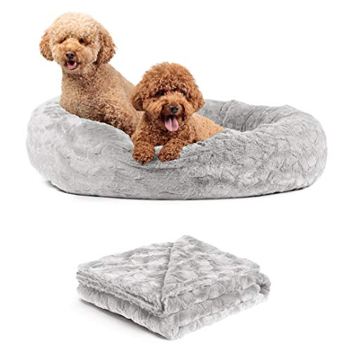 Best Fur Blanket for Dogs