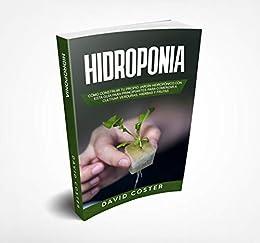 HIDROPONIA: Cómo Construir tu propio Jardín Hidropónico con una ...