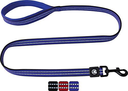 DDOXX Hundeleine Nylon, Reflektierend, Hand-Schlaufe, Gepolstert, 120 cm | viele Farben & Größen | für kleine & große Hunde | Schlepp-Leine | Führ-Leine Hund Katze Welpe | Lauf-Leine | Blau, S