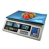 AOMEX Bilancia digitale professionale commerciale da 40 kg CON BATTERIA RICARICABILE e ali...