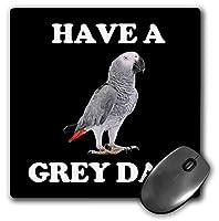 3dRose マウスパッド アフリカングレーオウム グレーデイ - 20.32×20.32cm (mp_296578_1)
