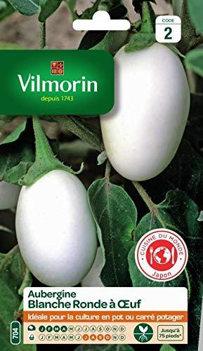 Vilmorin - Sachet graines Aubergine blanche ronde à oeuf