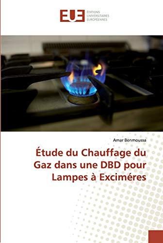 Étude du Chauffage du Gaz dans une DBD pour Lampes à Exciméres