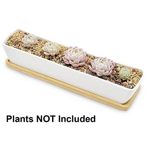 Boloniprod Blumenkasten mit Untersetzern aus Bambus, 30 cm lang, rechteckig, weiß, für Sukkulenten, Blumentöpfe, Mini-Blumen, Pflanzgefäße mit Bambus-Untertassen 11.1x2.36x1.77inch Stil 1
