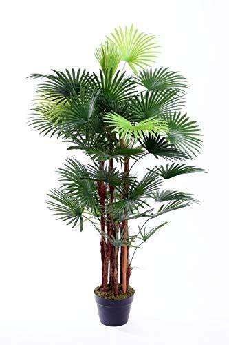Best Artificial 4pies/120cm araña dedo palmera Tropical oficina interior interior exterior jardín planta