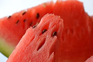 New CHARLESTON GRAY WATERMELON Citrullus Lanatus Red Fruit Melon 50+ Seeds