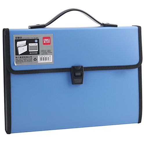 LI-GELISI Accordion Expanding File Folder,13-Pockets,A4 Size,Handle and Tabs,Buckle Closure (Blue)