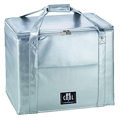 Kühltasche Kühlbox 45 Liter Silber hochwertig BE CooL City Picknickkorb foolonli