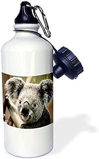 Sports Water Bottle Gift, Koala Bear Closeup White Stainless Steel Water Bottle for Women Men 21oz