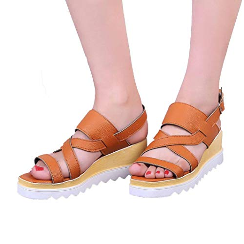 Lady Wedge Heel Sandals Buckle Strap Cross Tie Leather Solid Color Side Hollow Ant-Slip Elegant Casual Ankle-Strap Sandals