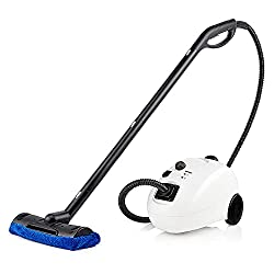 Best Steam Cleaners For Pet Urine - Best steam cleaners for home use