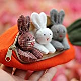 Sdoveb 3 Bunnies in Carrot Purse, Children Purse, 3 Bunnies Toy Carrot Toy, Bunny with Carrot Stuffed Animal Easter Gift for Kids (as Show)
